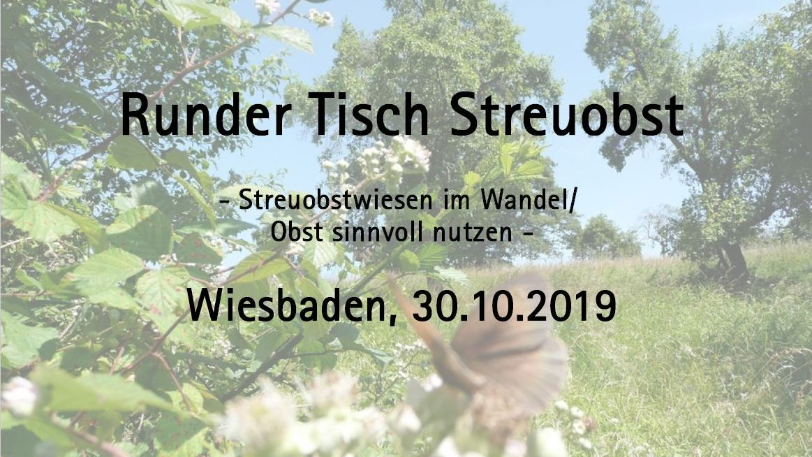 Naturefund: Runder Tisch Streuobst