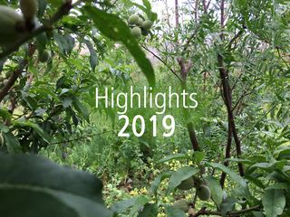 [Translate to Español:] Highlights 2019
